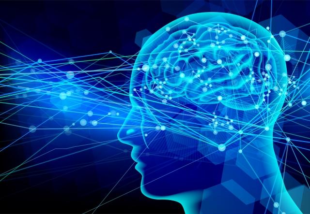 頭の回転を速くする6つの方法!日々のトレーニングで脳を鍛えよう。