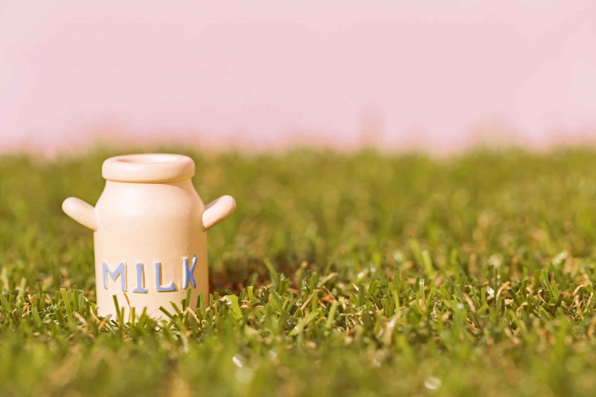 コーヒー牛乳とカフェオレの違いとは?美味しい作り方をご紹介。
