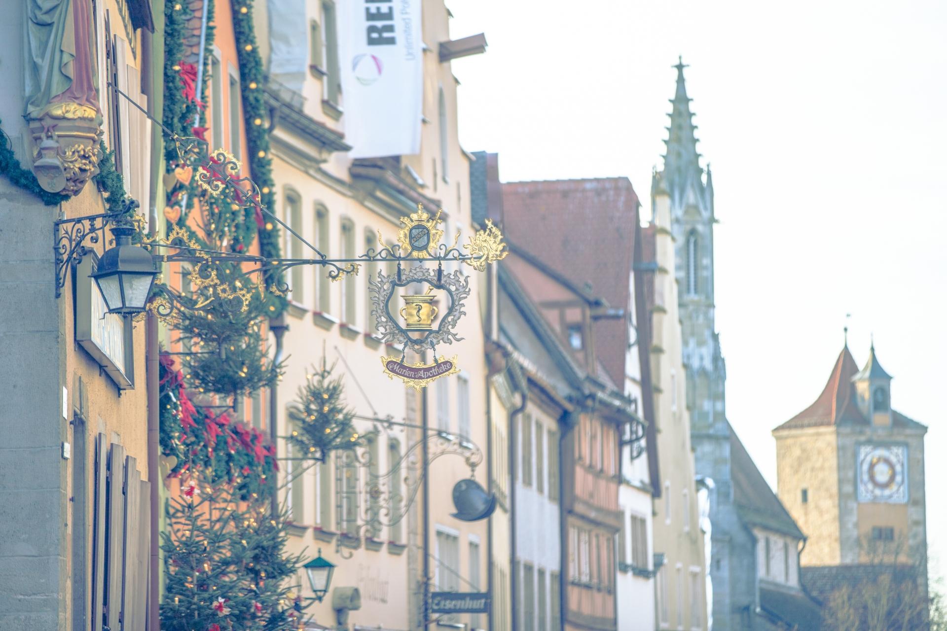 ドイツロマン主義からドイツ文化の2つの顔・哲学と文学を考察。