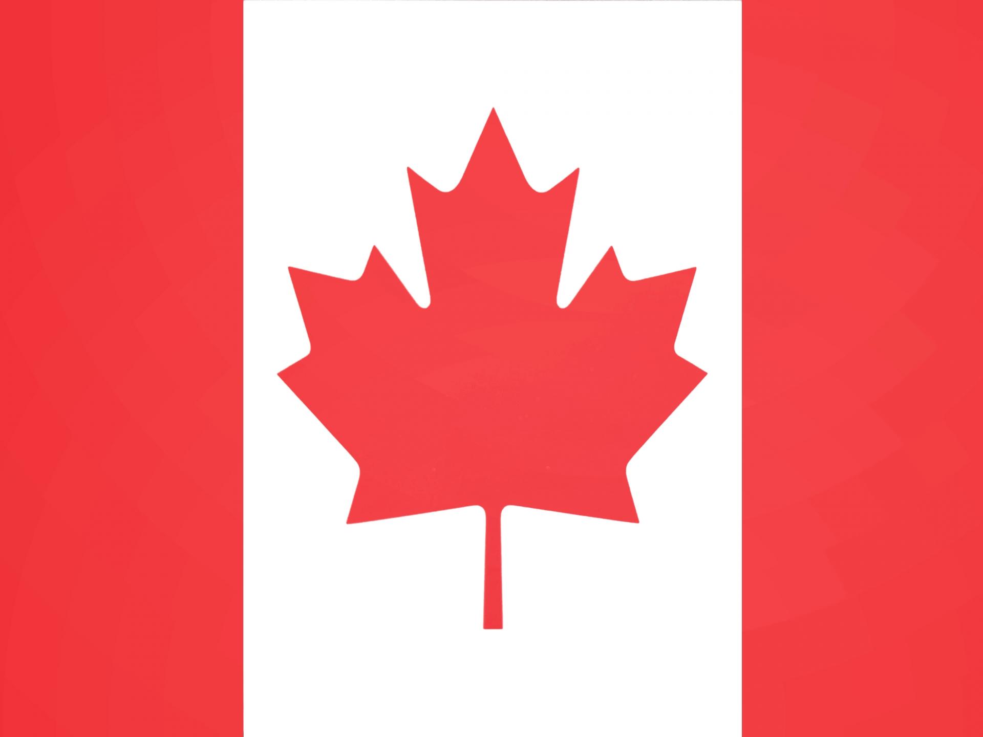 カナダドル円(CAD/JPY)の特徴。値動きの傾向と取引する時の注意点。
